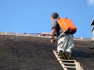 Traitement hydrofuge de toiture Saint-Pierre-de-Plesguen